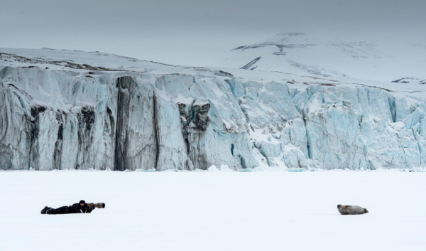 Photo-expedition in Svalbard