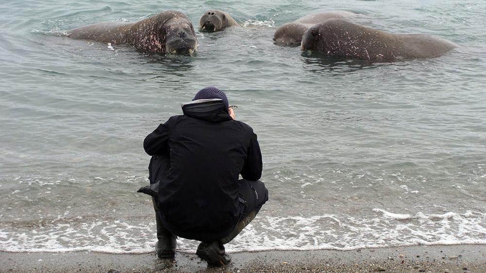 Walruss Photography ©-Marcel Schütz-2020